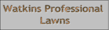 Watkins Professional